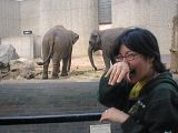 London Zoo: [Friday 30th June 2000] Myself and Chie having a lovely day out at the zoo.